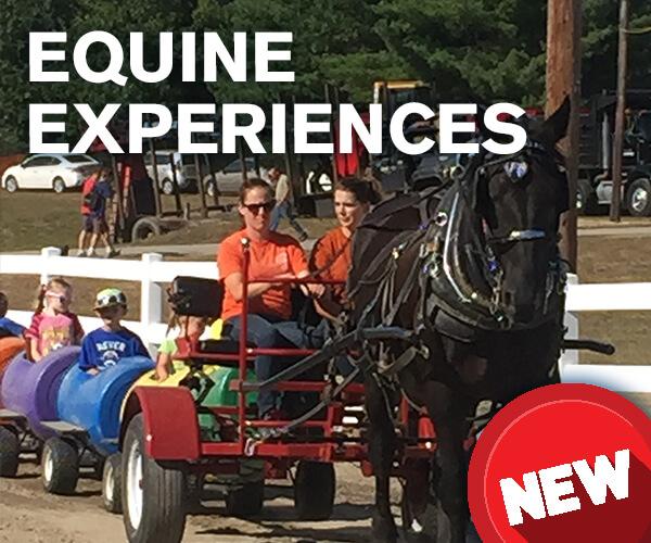 Hopkinton State Fair Equine